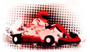 adult karting 2
